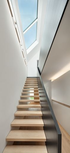 This unique photo is truly an impressive design theme. Interior Architecture, Interior Design, Tree Canopy, House Inside, House Stairs, Stair Railing, Design Your Home, Staircase Design, Skylight
