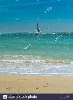 Download this stock image: View from the beach at Sandbanks, Poole, Dorset. UK. Taken on 29th September 2015. - F59YA2 from Alamy's library of millions of high resolution stock photos, illustrations and vectors.