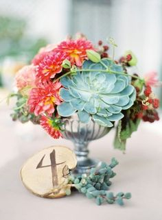 Never met a succulent we didnt love. Gorgeous as a table centerpiece!