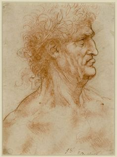 Leonardo Da Vinci, Head of a man in profile crowned with laurel, 1506 - 1508 ac, blood brush up pen on paper prepared in red; 22.2 x 17.5 cm.  Turin Biblioteca Reale (Royal Library)