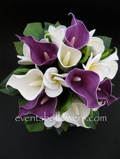 Real touch frangipani plumeria calla lilly wedding flowers posy bouquet, maybe not really my sister or her wedding colors, but so pretty! Calla Lillies Wedding, Calla Lillies Bouquet, Purple Calla Lilies, Flower Bouquet Wedding, Calla Lily, Lily Wedding, Dream Wedding, Beautiful Flowers, Beautiful Gardens