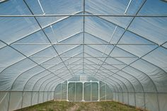 "High Tunnels are an increasingly popular trend for growers and a proven technology for crop production. The term ""high tunnel"" is a loosely defined phrase for growing fruits and vegetables in greenhouses, although some high tunnels are used for cut flower production. The difference between a High Tunnel and a regular free-standing greenhouse is that high tunnels use Eastpoint, Northpoint and Nor Easter frames, with longer ground posts, to make them ""high"" tunnels."