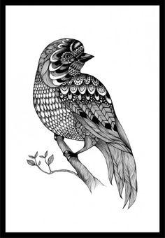 The Bird A4 Johanna Arpiainen