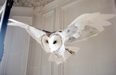 Paper owl | Anna Wili Highfield