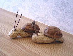"""""""Snail"""" nature craft  ❥"""