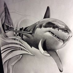 Shark Stunning drawing pencil works by David Reveles Hai Tattoos, Body Art Tattoos, Sleeve Tattoos, Animal Drawings, Cool Drawings, Shark Drawing, Sketch Style, Shark Art, Geniale Tattoos