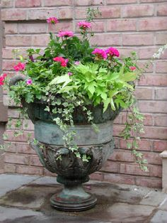 Urns make everything look great. Potato vine has been a great foliage accent for years now, for good reason. Some indoor English Ivy brings a whole new shape to the pot, and Dahlias, Callas, or Cannas can make great centerpieces.