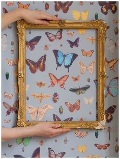 cut outs wallpaper butterflies and insects  to be placed throughout the tables