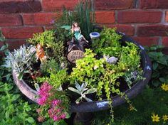 Jenny Alexander's recycled fountain fairy garden planted with pink alyssum, baby blue eyes, some sedum and creeping thyme. Fairy Garden Plants, Garden Art, Garden Design, Garden Ideas, Fairy Gardening, Organic Gardening, Garden Whimsy, Garden Junk, Indoor Gardening