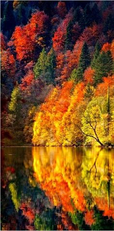 20 Scenic Autumn photos around the World - Science and Nature Fall Pictures, Fall Photos, Colorful Pictures, Nature Pictures, All Nature, Amazing Nature, Autumn Nature, Nature Water, Nature Tree
