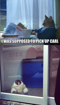 i was supposed to pick up Carl.. What the hell?! this actually made me do a spit take.
