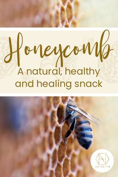 Honeycomb might not be the first food you think of when you want a good quality snack, but it's packed full of naturally good stuff. Head over to the blog to find out more. While you're there, sign up to the newsletter to receive 20% off your first order. #honey #luxuryhoney #jarrahhoney #redgumhoney #nectahive #wellbeing #honeycomb Pure Honey, Raw Honey, Honey Bees, Can I Eat, I Can, Australian Honey, Bee Do, Best Honey, Bee Pollen