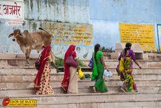 #Pushkar #india #travel