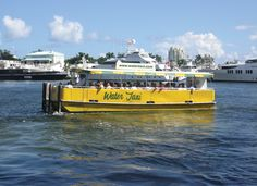 The Water Taxi now transports patrons between the Fort Lauderdale Intracoastal and Hollywood, providing access to the beaches, restaurants and shops of Broward. Hollywood Beach Florida, In Hollywood, Stuff To Do, Things To Do, Fort Lauderdale, Taxi, Trip Planning, Beaches, Transportation