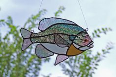 """The bluegill sunfish is about 7 1/2"""" horizontal by 5 1/4"""" vertical, copper foiled and soldered with lead free solder. The body of the fish is cut from an iridescent Kokomo textured, with iridescent cord, and German mouth blown antique rounding out the selection."""
