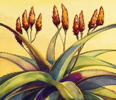 Limited Edition prints available. Tequila Agave, Downtown Santa Barbara, Limited Edition Prints, Aloe, Succulents, Paintings, Sun, Garden, Garten