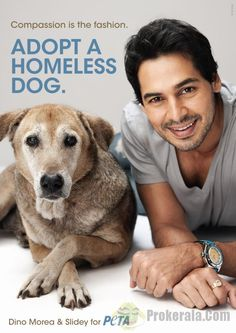Dino Morea with his rescued dog Slidey in a People for the Ethical Treatment of Animals (PETA) campaign.