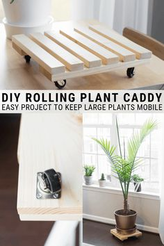 Learn how to build a DIY rolling plant caddy. Building an easy rolling plant stand is an easy way to keep large plants mobile. Learn how to build a DIY rolling plant caddy. Building an easy rolling plant stand is an easy way to keep large plants mobile. Apartment Decoration, Decoration Bedroom, Modern Plant Stand, Diy Plant Stand, Ikea Furniture, Woodworking Furniture, Furniture Plans, Furniture Storage, Woodworking Tips