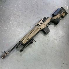 Custom M1A