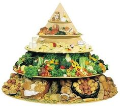 food pyramid picture-day