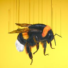 'Free Bee' by Louise McNaught