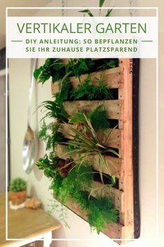 Pallets are humble structures but they sure make splendid ideas in the garden come to life. This includes a wall herb garden with a simple pallet planter anyone can do. Vertical Garden Design, Vertical Planter, Balcony Planters, Diy Planters, Pallet Planters, Jardim Vertical Diy, Small Backyard Patio, Diy Patio, Herbs Indoors