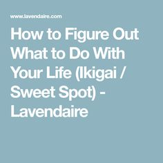 How to Figure Out What to Do With Your Life (Ikigai / Sweet Spot) - Lavendaire