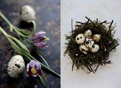 http://www.clemmensen-brok.com/search/label/Easter