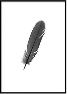 Läcker poster med motiv av en fjäder. Trendig och snygg att göra i tavelcollage. Snygg i både vit och svart ram. Tryckt på högkvalitativt, obestruket papper som håller länge. Ram ingår ej. Storlek: A3 Tatoos, Feather, Poster Prints, Bird, Pretty, Photography, Fashion Design, Painting, Beautiful