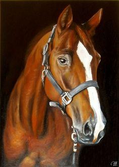 Centurion Original Öl auf Leinen caballos t Horse art - HORSE'S - # Easy Landscape Paintings, Scratchboard Art, Unicorn Pictures, Horse Artwork, Horse Drawings, Equine Art, Horse Head, Animal Paintings, Beautiful Horses