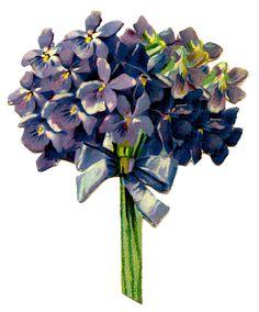 Victorian Graphic - Violet Bouquet - The Graphics Fairy #Printable #Vintage #Floral
