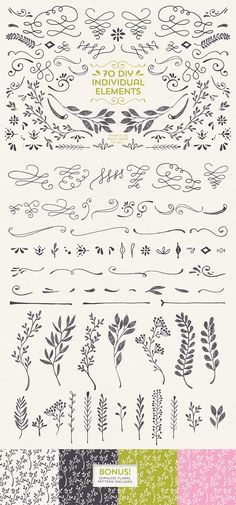 Text Dividers & Enhancers by Lisa Glanz on @creativemarket
