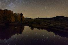 Stars at the lake. <3