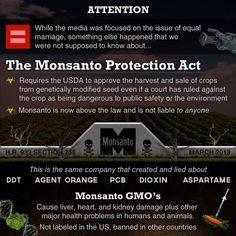 Need To Know, Did You Know, Gmo Facts, Genetically Modified Food, The Knowing, Bad Food, In A Nutshell, Genetics, Health And Wellness