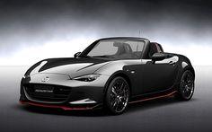 ロードスター RS Racing Concept