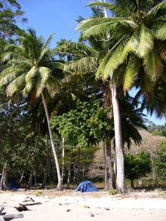 Camping in the Andaman Islands, India Andaman And Nicobar Islands, Camping Glamping, India, Vacation, Places, Outdoor Decor, Goa India, Vacations, Holidays Music