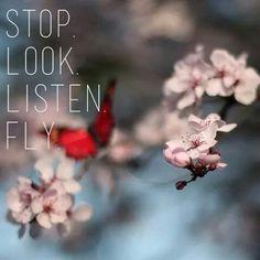 Stop. Look. Listen. Fly!
