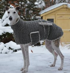 Greyhound Sweater Greyhound Coat Crochet Dog Sweater Grey with Oatmeal trim Made to Measure Lined Large Dog Coats, Large Dog Sweaters, Large Dog Clothes, Large Dogs, Big Dogs, Dog Sweater Pattern, Crochet Dog Sweater, Dog Pattern, Sweater Design