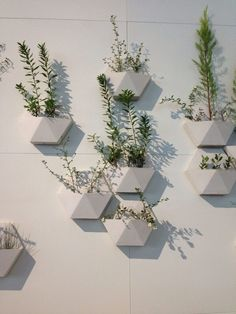 17 Most Creative Ways For Creating Vertical Planter Display In The Home Beton Design, Concrete Design, Plant Wall, Plant Decor, Plant Pots, Indoor Garden, Indoor Plants, Balcony Garden, Concrete Planters