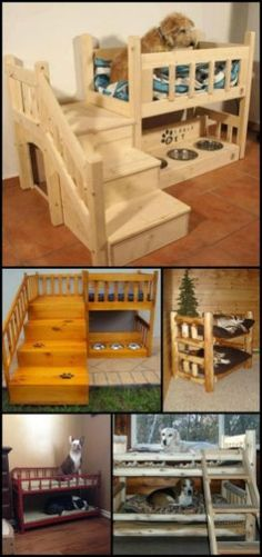 How to Build a Bunk Bed For Your Pets. They always deserve to have their own, personal space. Got more than one fur baby in the household? Make a DIY dog bunk bed for them! Animal Room, Dog Bunk Beds, Diy Dog Bed, Pet Beds Diy, Dog Furniture, Pallet Furniture, Modern Furniture, Furniture Design, Dog Rooms