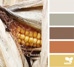 husked tones - color palette, love the brown, orange, and yellow