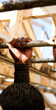 Tough Mudder - What an awesome challenge! Do your PULLUPS!!