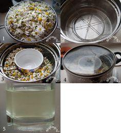 Гидролат из свежих и сухих трав — ваша домашняя аптека молодости