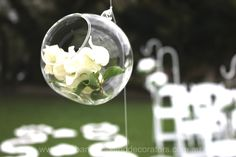 Pretty wedding decor ~ glass globes containing fresh florals suspended from the wedding arch by www.brisbaneweddingdecorators.com.au