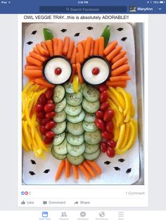 Owl vegetable platter - photo only Kids party Platter with Fun Owl Vegetable Platter What a Hoot! Owl vegetable tray is a big hit ! Gemüsesticks mit Dip als Eule. vegetable sticks with dip as owl. very cute idea for a birthday party! (yummy snacks for ki Veggie Platters, Veggie Tray, Veggie Owl, Vegetable Trays, Veggie Display, Vegetable Animals, Vegetable Carving, Cute Food, Yummy Food