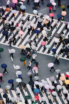 thekimonogallery:Umbrellas in shibuya (tokyo) , Japan. Michael Freeman Photography