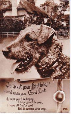 Laddie Boy Postcard 1954