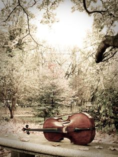 I used to play the cello. Would love to pick one up and see if I still got it ;0) Maybe learn to play again...