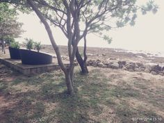 Tanjung lesung Indonesia
