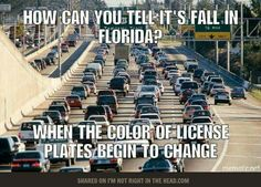 Living in Florida isn't always easy, but we wouldn't choose to live anywhere else. Living anywhere is a lot easier if you learn to laugh at yourself. Florida Meme, Florida Girl, All About Insurance, Car Insurance, Funny Facts, Funny Memes, Jokes, Hilarious, Car Memes